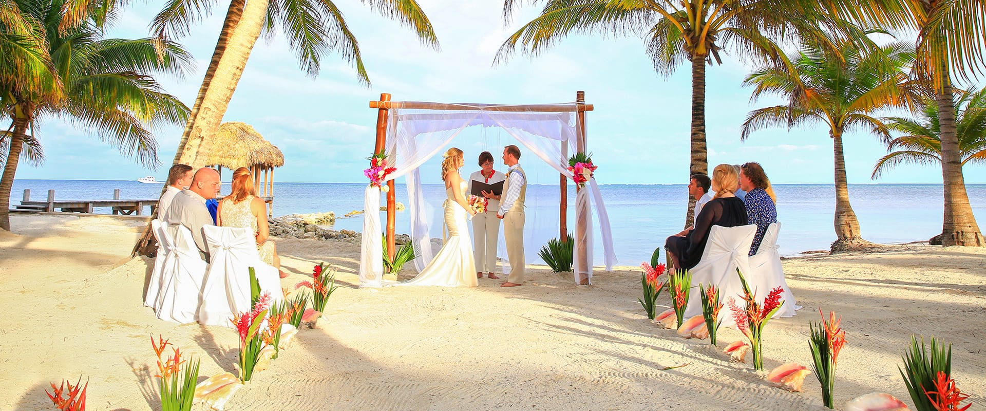 paradise-wedding-top-banner